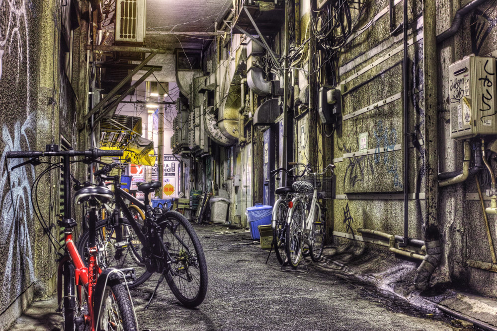 dp2 merrill ueno alley2013-2nobiann