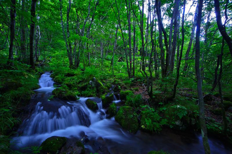 五郎の滝2web