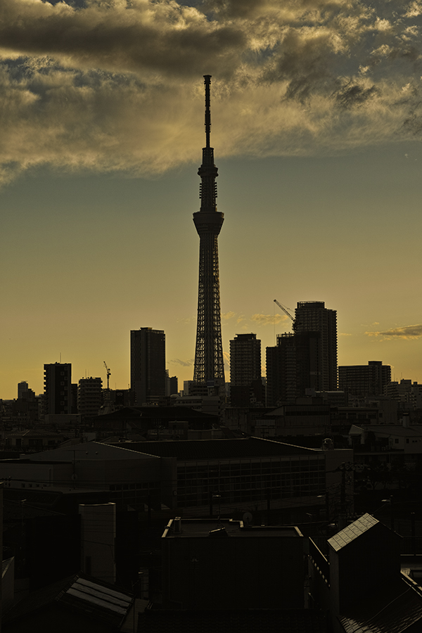 Tokyo skytree view from my office 2015 4 15nobiann