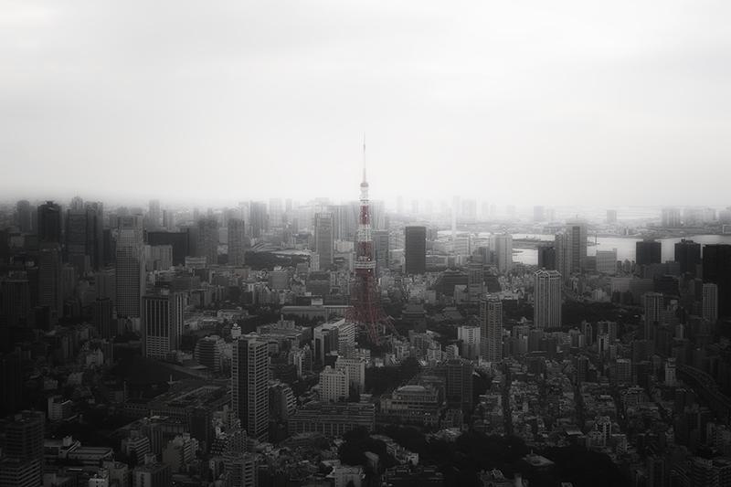 六本木ヒルズから東京タワーnobiann